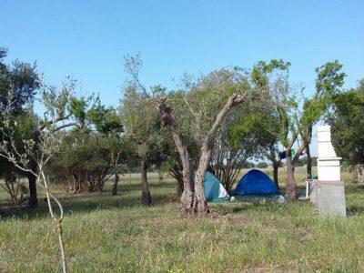 Agritourism in Vendicari
