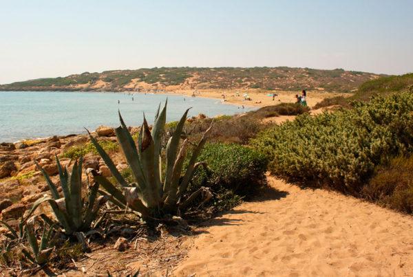 Marinelli beach Vendicari Reserve