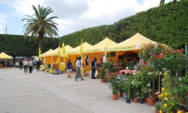 Market at Villa Communale- Guide to Noto